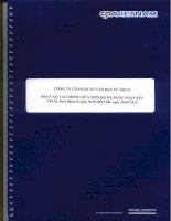 Báo cáo tài chính quý 2 năm 2012 (đã soát xét) - Công ty Cổ phần Tư vấn Đầu tư IDICO