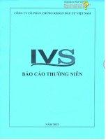 Báo cáo thường niên năm 2013 - Công ty cổ phần Chứng khoán Đầu tư Việt Nam