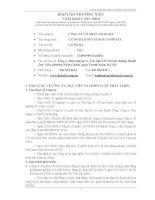 Báo cáo thường niên năm 2010 - Công ty Cổ phần Licogi 13