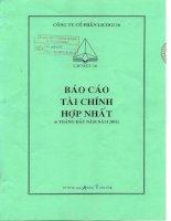 Báo cáo tài chính hợp nhất quý 2 năm 2011 - Công ty cổ phần LICOGI 16