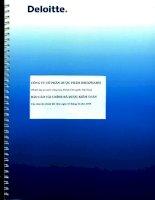 Báo cáo tài chính năm 2015 (đã kiểm toán) - Công ty Cổ phần Dược phẩm IMEXPHARM