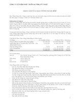 Báo cáo tài chính năm 2010 (đã kiểm toán) - Công ty Cổ phần Phát triển Hạ tầng Kỹ thuật