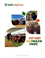 Báo cáo thường niên năm 2015 - Công ty cổ phần Nông nghiệp Quốc tế Hoàng Anh Gia Lai