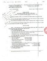 Nghị quyết Đại hội cổ đông thường niên năm 2010 - Công ty cổ phần Gỗ MDF VRG Quảng Trị