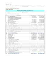 Báo cáo tài chính quý 4 năm 2009 - Công ty Cổ phần Thủy điện Nà Lơi
