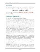 Báo cáo thường niên năm 2006 - Công ty Cổ phần Tập đoàn Kido