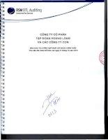 Báo cáo tài chính hợp nhất năm 2014 (đã kiểm toán) - Công ty Cổ phần Tập đoàn Hoàng Long