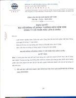 Nghị quyết đại hội cổ đông ngày 15-05-2009 - Công ty Cổ phần Hữu Liên Á Châu