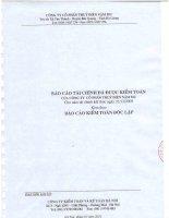 Báo cáo tài chính năm 2009 (đã kiểm toán) - Công ty Cổ phần Thủy điện Nậm Mu