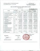 Báo cáo tài chính công ty mẹ quý 2 năm 2011 - Công ty Cổ phần Đầu tư và Dịch vụ Khánh Hội