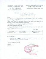 Báo cáo tài chính quý 1 năm 2016 - Công ty Cổ phần Hòa Việt