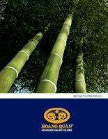 Báo cáo thường niên năm 2010 - Công ty cổ phần Tư vấn-Thương mại-Dịch vụ Địa ốc Hoàng Quân
