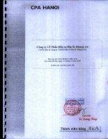 Báo cáo tài chính công ty mẹ năm 2008 (đã kiểm toán) - Công ty Cổ phần Đầu tư Địa ốc Khang An