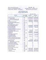 Báo cáo tài chính quý 4 năm 2010 - Công ty Cổ phần Bột giặt Net