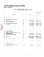 Báo cáo tài chính hợp nhất quý 1 năm 2012 - Công ty Cổ phần Tập đoàn Thủy sản Minh Phú