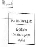 Báo cáo tài chính năm 2006 (đã kiểm toán) - Công ty Cổ phần Viglacera Hạ Long I