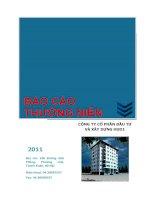 Báo cáo thường niên năm 2010 - Công ty Cổ phần Đầu tư và Xây dựng HUD1