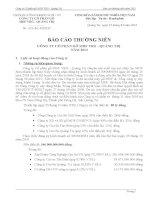 Báo cáo thường niên năm 2012 - Công ty cổ phần Gỗ MDF VRG Quảng Trị