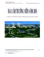 Báo cáo thường niên năm 2010 - Công ty Cổ phần Phát triển Hạ tầng Kỹ thuật
