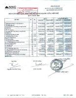 Báo cáo KQKD quý 3 năm 2010 - Công ty Cổ phần Đá Núi Nhỏ