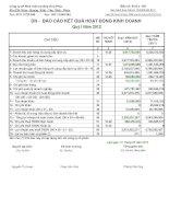 Báo cáo tài chính công ty mẹ quý 1 năm 2012 - Công ty Cổ phần Phát triển Hạ tầng Vĩnh Phúc