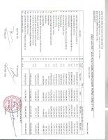 Báo cáo KQKD công ty mẹ quý 2 năm 2011 - Công ty Cổ phần Tập đoàn Thủy sản Minh Phú
