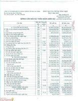 Báo cáo tài chính quý 1 năm 2015 - Công ty cổ phần Dịch vụ Hàng không Sân bay Đà Nẵng