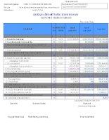 Báo cáo tài chính quý 1 năm 2010 - Công ty Cổ phần Minh Hữu Liên