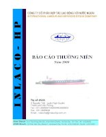 Báo cáo thường niên năm 2008 - Công ty Cổ phần Hợp tác Lao động với Nước ngoài