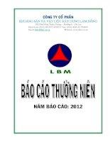 Báo cáo thường niên năm 2012 - Công ty Cổ phần Khoáng sản và Vật liệu xây dựng Lâm Đồng