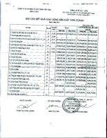 Báo cáo tài chính công ty mẹ quý 4 năm 2010 - Công ty Cổ phần Cơ điện và Xây dựng Việt Nam