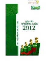 Báo cáo thường niên năm 2012 - Công ty Cổ phần Tập đoàn Mai Linh Miền Trung