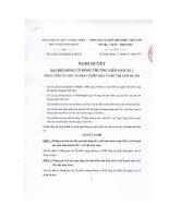 Nghị quyết đại hội cổ đông ngày 21-02-2011 - Tổng Công ty Đầu tư Phát triển Nhà và Đô thị Nam Hà Nội