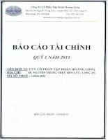 Báo cáo tài chính công ty mẹ quý 1 năm 2013 - Công ty Cổ phần Tập đoàn Hoàng Long