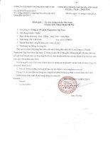Báo cáo tài chính công ty mẹ quý 2 năm 2015 (đã soát xét) - Công ty cổ phần Nagakawa Việt Nam