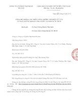 Báo cáo tài chính hợp nhất quý 2 năm 2013 (đã soát xét) - Công ty Cổ phần Tập đoàn MaSan