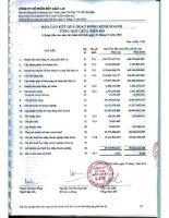 Báo cáo KQKD hợp nhất quý 2 năm 2010 (đã kiểm toán) - Công ty Cổ phần Bột giặt Lix