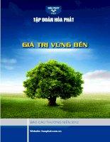 Báo cáo thường niên năm 2012 - Công ty cổ phần Tập đoàn Hòa Phát