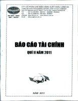Báo cáo tài chính quý 2 năm 2011 - Công ty Cổ phần Chế biến Hàng xuất khẩu Long An