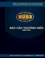 Báo cáo thường niên năm 2013 - Công ty cổ phần Đầu tư và Xây dựng HUD3
