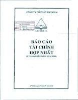 Báo cáo tài chính hợp nhất quý 3 năm 2011 - Công ty cổ phần LICOGI 16