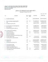 Báo cáo tài chính hợp nhất quý 3 năm 2012 - Công ty Cổ phần Tập đoàn Thủy sản Minh Phú