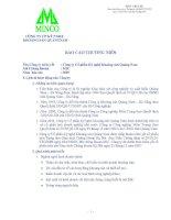 Báo cáo thường niên năm 2007 - Công ty Cổ phần Kỹ nghệ Khoáng sản Quảng Nam