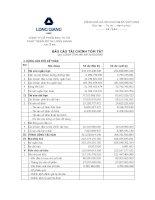 Báo cáo tài chính quý 1 năm 2009 - Công ty cổ phần Đầu tư và Phát triển Đô thị Long Giang