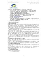 Báo cáo thường niên năm 2006 - Công ty Cổ phần Tập đoàn Thủy sản Minh Phú