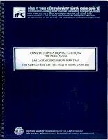Báo cáo tài chính năm 2012 (đã kiểm toán) - Công ty Cổ phần Hợp tác Lao động với Nước ngoài