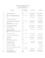 Báo cáo tài chính hợp nhất quý 4 năm 2010 - Công ty Cổ phần Cung ứng và Dịch vụ Kỹ thuật Hàng Hải