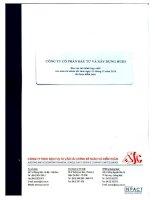 Báo cáo tài chính hợp nhất năm 2010 (đã kiểm toán) - Công ty cổ phần Đầu tư và Xây dựng HUD3