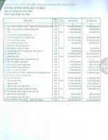 Báo cáo tài chính quý 1 năm 2009 - Công ty Cổ phần Chế biến Thủy sản Xuất khẩu Ngô Quyền