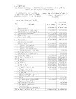 Báo cáo tài chính năm 2008 (đã kiểm toán) - Công ty Cổ phần Tư vấn Đầu tư IDICO